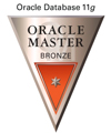ORACLE MASTER Bronze(ORACLE Database 11g)